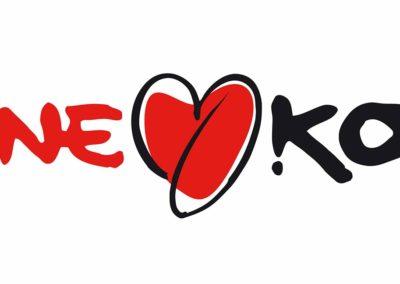 Normativa-One-Kor-02-4_ok - Logotipos, Branding, diseño gráfico, imagen de marca Catálogos, folletos, newsletter. Sabadell Barcelona