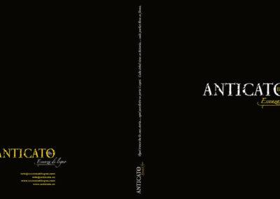 EXPOSITOR-ANTICATO-2009-05--2_ok